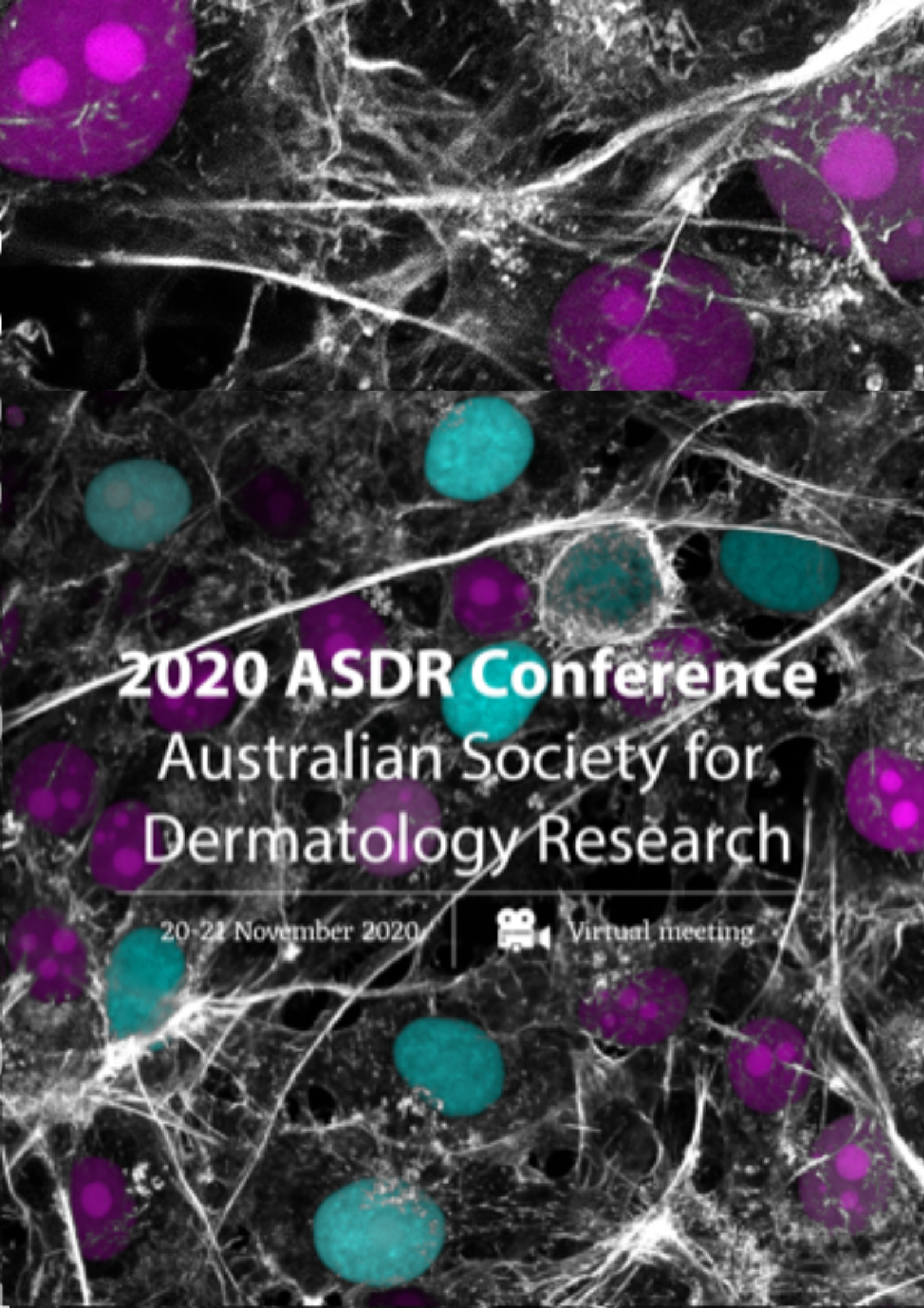 ASDR Conference 2020