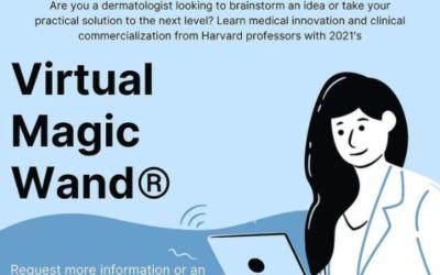 European Virtual Magic Wand educational program
