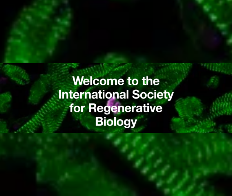 Promoting Science for Skin Regeneration